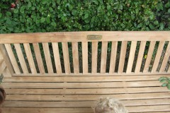Len's bench