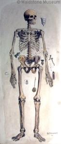 Sar4_burial