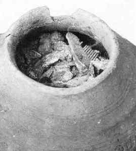 spong urn wth comb