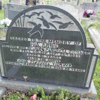 Of Swallows and Souls - Cemetery Ornithology 6