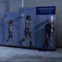 The Walk of Evolution in The Walking Dead Season 9